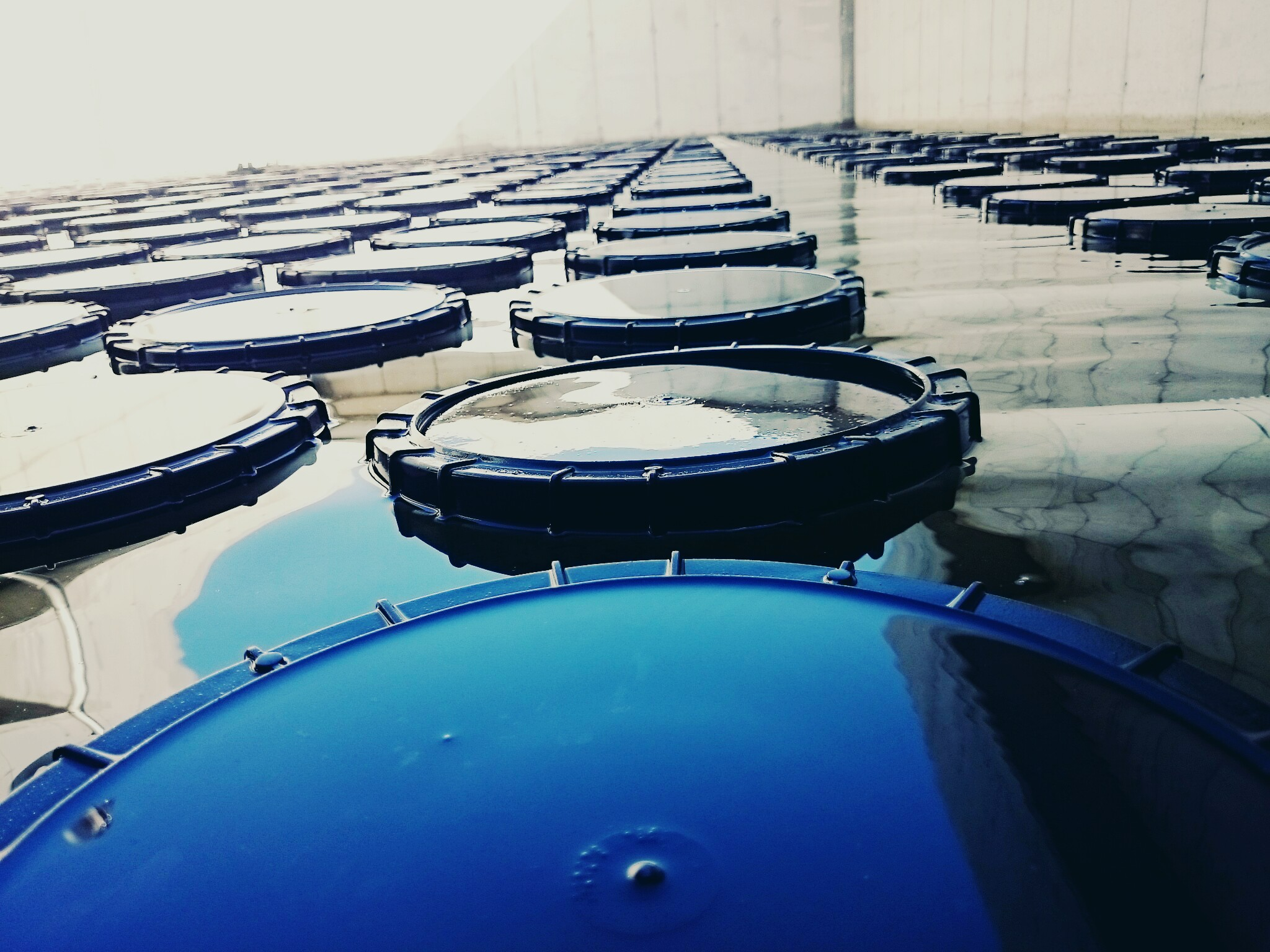 Disc Diffusers set up in a lagoon basin